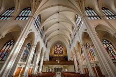 Cathedral Basilica of the immaculate Conception Stock Image