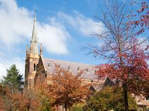 Cathedral behind the autumn tr Royalty Free Stock Photos