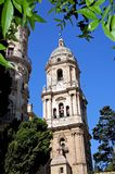 Cathedral bell tower, Malaga, Spain. Stock Images
