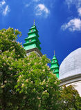 Cathedral belltowers and chesnut tree in blossom Stock Photo