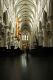 Cathedral in Brussels. St Gudule and St Michael Cathedral indoor in Brussels, Belgium stock photos