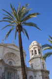 Cathedral of Cadiz with decorative palm. Royalty Free Stock Image