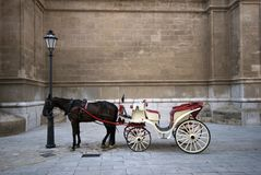 Cathedral and carriage Royalty Free Stock Photos