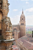 Cathedral (Catedral Nueva), Old City of Salamanca, Spain. Stock Photos