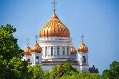 Cathedral of Christ the Savior golden domes Stock Images