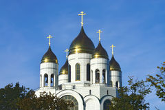 Cathedral of Christ the Savior. Kaliningrad, Russia Royalty Free Stock Photography