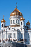 Cathedral of Christ the Savior. Moscow Royalty Free Stock Images