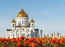 The Cathedral of Christ the Savior in Moscow, Russia Royalty Free Stock Photos