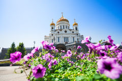 Cathedral of Christ the Savior with purple flowers Stock Photo
