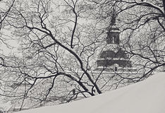 Cathedral Church In Winter, Vilnius Stock Image
