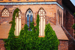 Cathedral Church of Kaliningrad on Kant island. UNESCO World Heritage Site. Royalty Free Stock Images