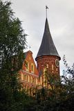 Cathedral Church in Kaliningrad seen through the trees. Stock Photo