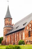 Cathedral in kaliningrad Royalty Free Stock Photo