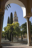 Cathedral of Cordoba Stock Photography