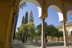 Cathedral of Cordoba Royalty Free Stock Image
