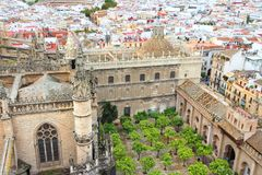 Cathedral courtyard in Seville Stock Images