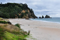 Cathedral Cove Beach in the Coromandel Peninsula, New Zealand Stock Images