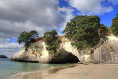 Cathedral Cove Coromandel Arch Stock Image