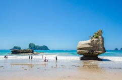Cathedral Cove in Coromandel Peninsula on the North Island of New Zealand. stock photography