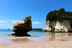 Cathedral Cove New Zealand Royalty Free Stock Photo