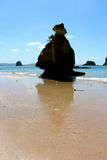 Cathedral Cove  New Zealand. The Famous Cathedral Cove  New Zealand rock standing tall Stock Photography