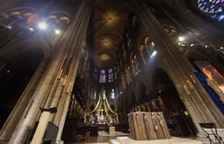 cathedral dame de notre Paris Photographie stock