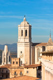 Cathedral De Girona Royalty Free Stock Image