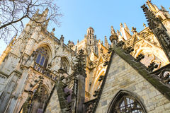 Cathedral in the Dutch city Den Bosch. The Netherlands Royalty Free Stock Photos