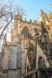 Cathedral in the Dutch city of Den Bosch. The Netherlands Royalty Free Stock Photography