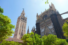 Cathedral and GIralda Tower Royalty Free Stock Photo