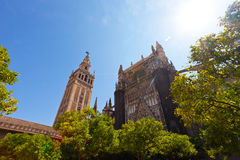 Cathedral and GIralda Tower Royalty Free Stock Image