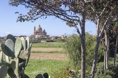 Cathedral in Gozo, Malta. In the far distance a cathedral on the island of Gozo. Framed by a cactus and trees stock image