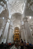 Cathedral of Granada Royalty Free Stock Photography