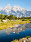 Tetons Reflected at Schwabacher's Landing Stock Photography
