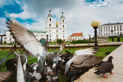 The Cathedral Of Holy Spirit In Minsk - The Main Stock Images