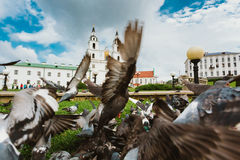 The Cathedral Of Holy Spirit In Minsk - The Main Royalty Free Stock Image