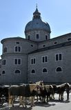 Cathedral and horses in Salzburg Royalty Free Stock Photo