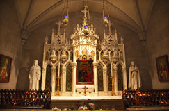 cathedral icon mary patrick s saint shrine Στοκ φωτογραφία με δικαίωμα ελεύθερης χρήσης