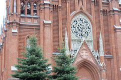 Cathedral of the Immaculate Conception. Stock Photography