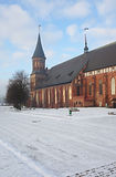 Cathedral in Kaliningrad. Kind on a cathedral in Kaliningrad in the winter Stock Images