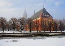 Cathedral in Kaliningrad. Kind on a cathedral in Kaliningrad in the winter Royalty Free Stock Images