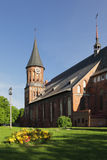 Cathedral in Kaliningrad. Cathedral on the island of Kant's a summer morning stock photo
