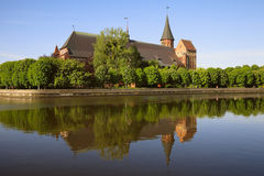 Cathedral  in Kaliningrad. Cathedral on the island of Kant with the reflection in a river Stock Images