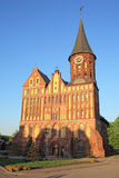 Cathedral in Kaliningrad. In front view on a background of a blue sky in the spring stock photo