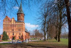 Cathedral in Kaliningrad, Cathedral of our lady and St. Adalbert, brick Gothic royalty free stock image