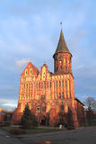 Cathedral in Kaliningrad. Cathedral in the glow of sunset, Kaliningrad Stock Image