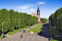 Cathedral in Kaliningrad, Russia Stock Image