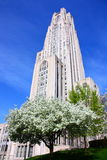 Cathedral Of Learning Royalty Free Stock Images
