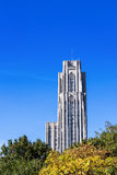 Cathedral of Learning Over Trees Royalty Free Stock Photo