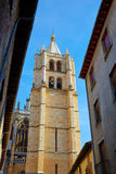 Cathedral of Leon in Castilla at Spain Stock Photos